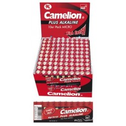 Linterna LED Homebright 3V 2xD R20 Camelion